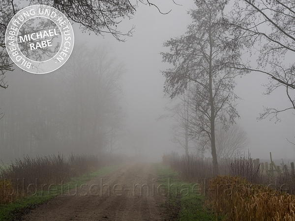 Originalbild: Weg am Moor an nebligem Morgen.
